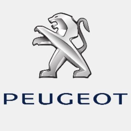 Imagine pentru producător Peugeot